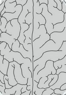Исследование гипноза и боли (исследование гипнотической анальгезии)